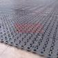 屋顶绿化排水板 乐兴科技疏水板 低价批发排水板 种植排水板厂家